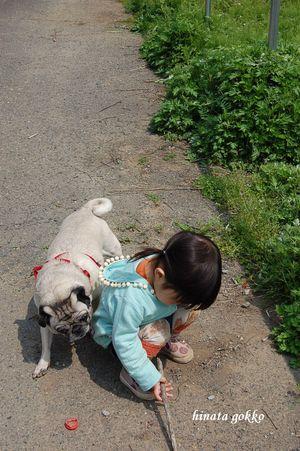 Matida_2008_14016